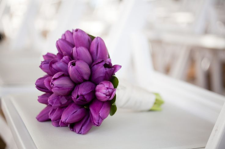 #tulips, #bouquet   photography:  thepopes.com    floral design: bellarugosa.com   as seen on #smp http://stylemepretty.com/2013/01/14/modern-seattle-wedding-from-the-popes/