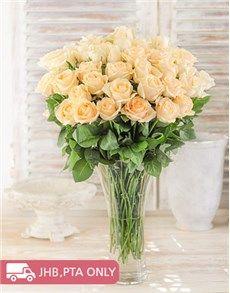Cream roses in a vase
