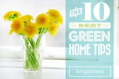10 Best Green Home tips