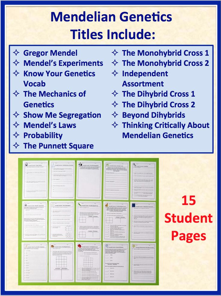 31 best science class images on pinterest balcony books online science stuff genetics problems and activities for biology interactive notebooks warm ups and fandeluxe Choice Image