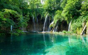 pond, cascata, alberi, natura