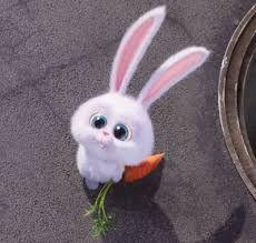 Resultado de imagen para snowball mascotas