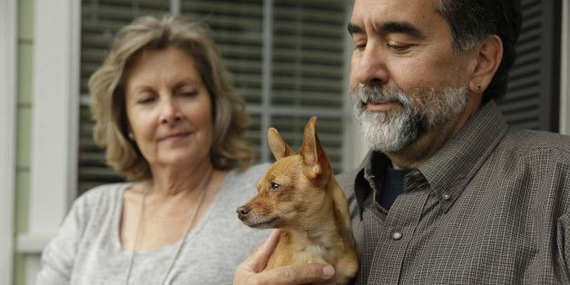 Shelter Dogs In California Find Forever Homes Faster Thanks To DNA Tests