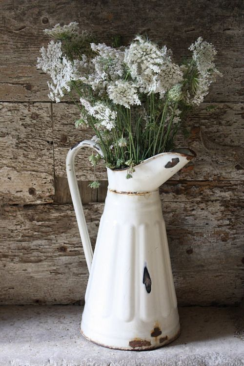 vintage rusty chipped white jug with white flowers