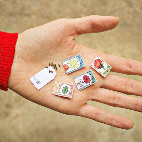 Print out your own miniature seed packets. Each of the plants featured has seeds small enough to fit into the packet.