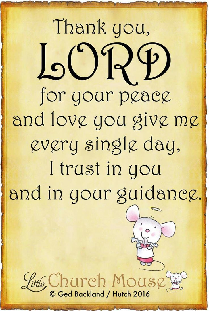 ♡✞♡ Thank you, Lord for your peace and love you give me every single day, I trust in you and your guidance. Amen...Little Church Mouse 6 May 2016 ♡✞♡