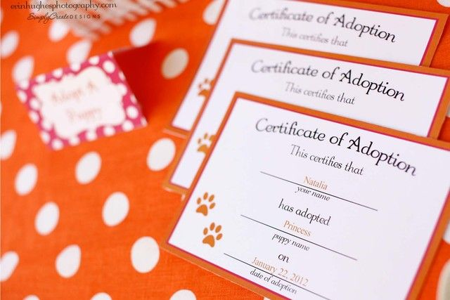 Certificate of Adoption for puppy stuffed animal