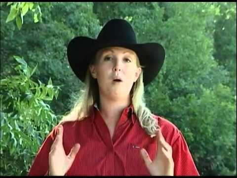 ▶ Stay in the Saddle Basic Western Horsemanship & Riding - YouTube