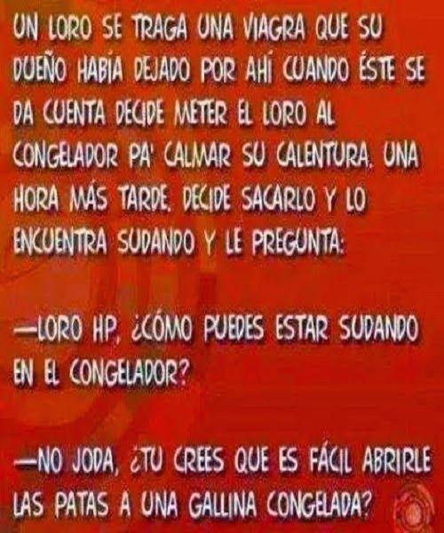 El loro y la viagra...  #humor #chiste #viagra #loro #congelador #gallina #jokes #funny
