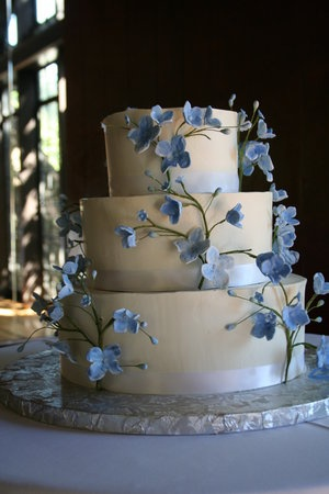 17 Best Images About Forget Me Nots On Pinterest Cakes