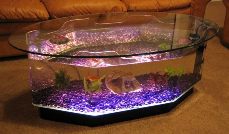 The 25 best fish tank coffee table ideas on pinterest for Fish tank coffee table diy