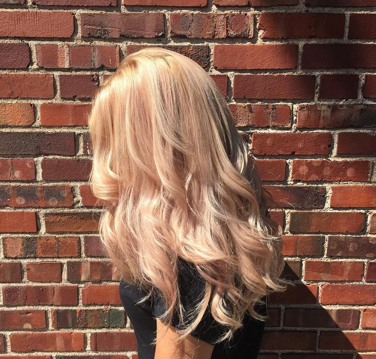 25 b sta gold blonde id erna p pinterest blont h r for What colour roses can you get