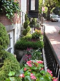 Window well planting