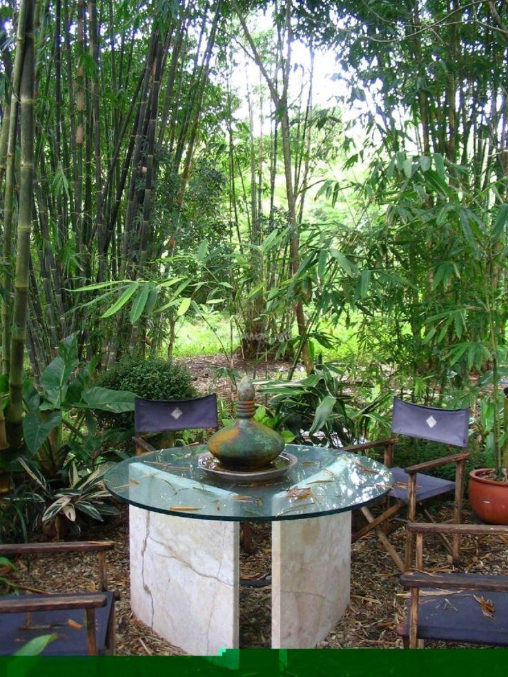 10 Amusing Bamboo Garden Designs : 10 Amusing Bamboo Garden Designs With  Outdoor Glass Table And