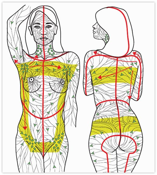 Lymph Drainage Map | Manual Lymphatic Drainage (MLD) video