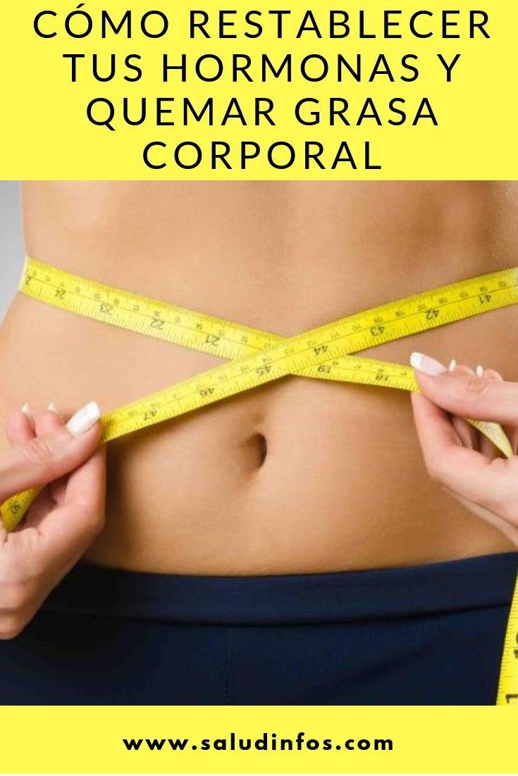 bajar grasa corporal dieta