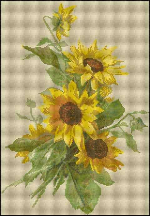 Цветы - схемы вышивки крестом скачать бесплатно в .xsd | 34