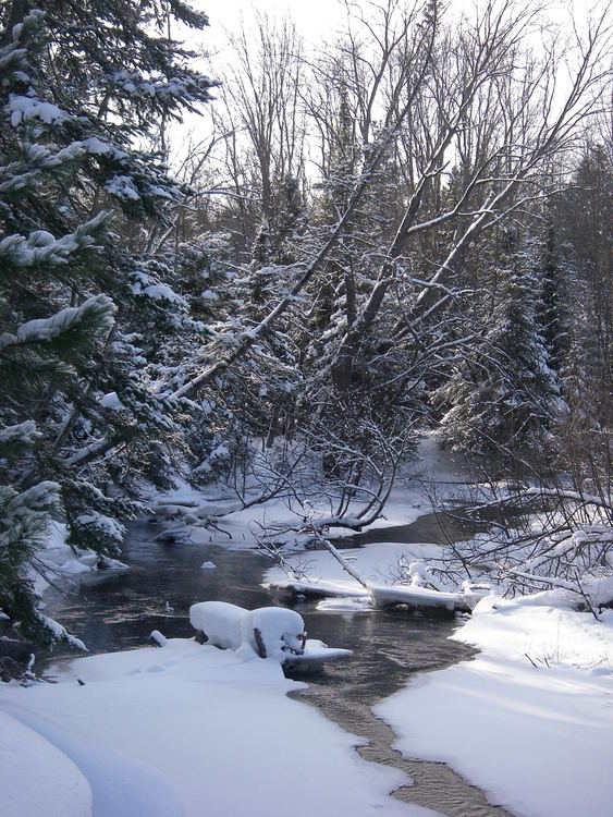 A tranquil winter scene in northern Michigan.