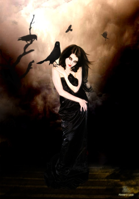 1000  images about woman with crow on Pinterest