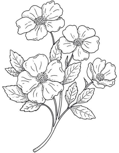 2238 best Stempelmotive images on Pinterest Coloring books - copy coloring pictures of flowers and trees