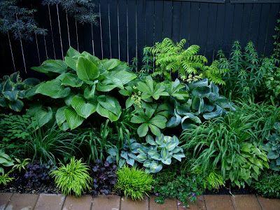 great shade garden texture & colours. paradis express: A sense of place
