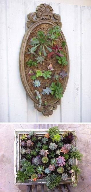 vertical garden frames