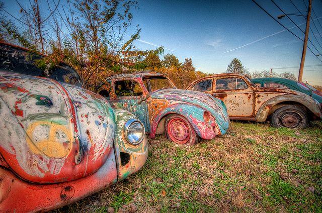 abandoned vw beetles #bug
