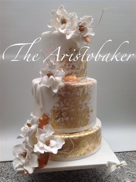 The AristoBaker di Bottà Gigliola