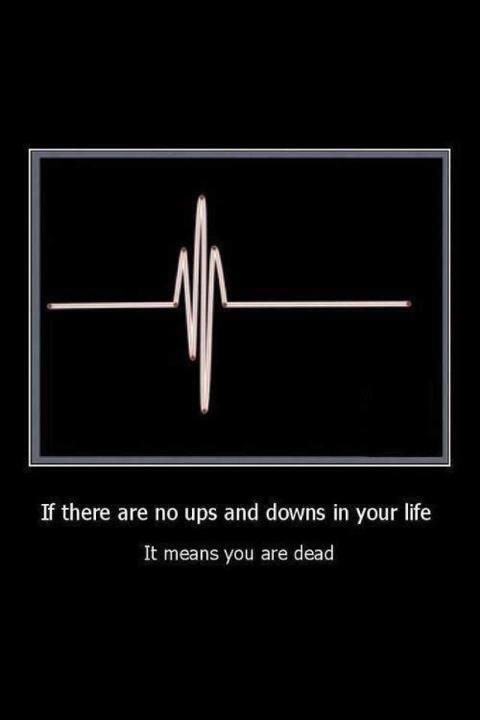 If there are no ups and downs in your life It means you are dead