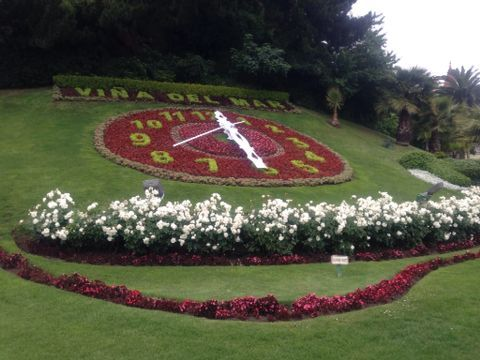Flower clock, Chile