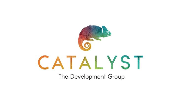 Catalyst Development Group | Brand strategy, Corporate ID, Marketing collateral, Responsive website whiteriverdesign.com