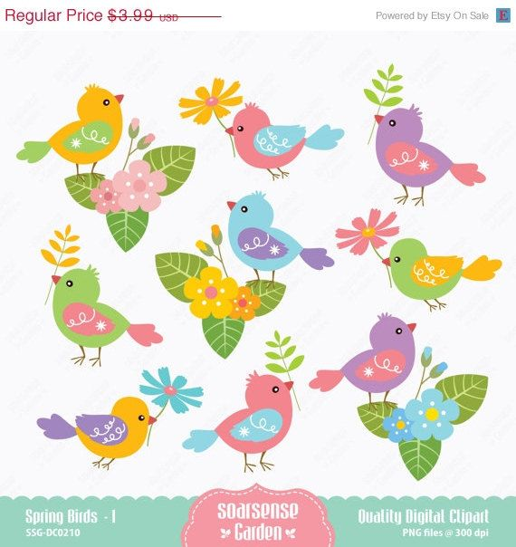 Spring Birds Digital Clipart