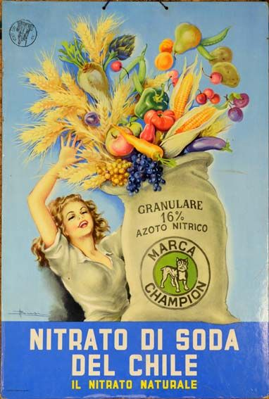 Nitrato di Soda vintage ad from Chile
