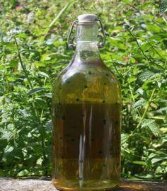 Licor de menta casero, aromático para añadir a cocteles, repostería. Este licor se puede añadir en pequeñas dosis a infusiones de miel y limón
