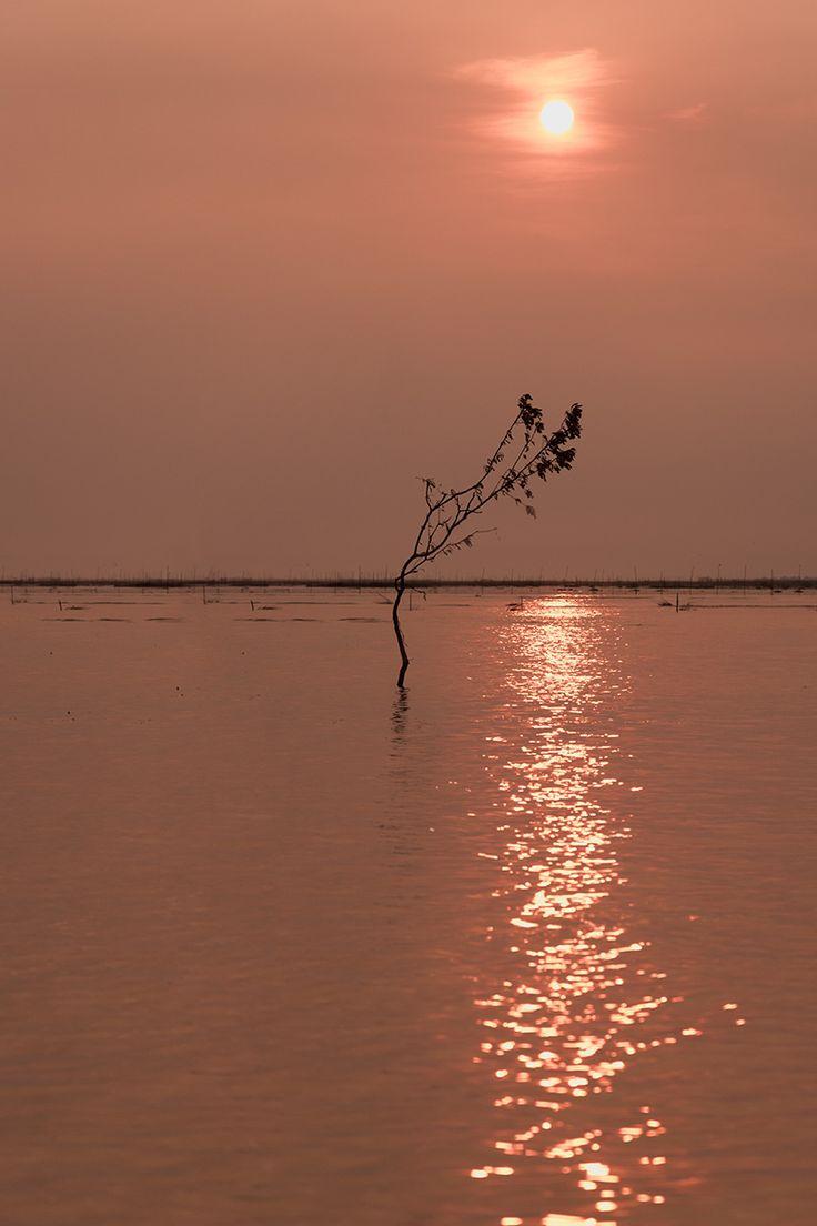 Озеро Тонлесап, Камбоджа. Tonle Sap Lake, Cambodia. Озеро с максимальной глубиной 1 метр, где находятся плавучие рыбацкие деревни