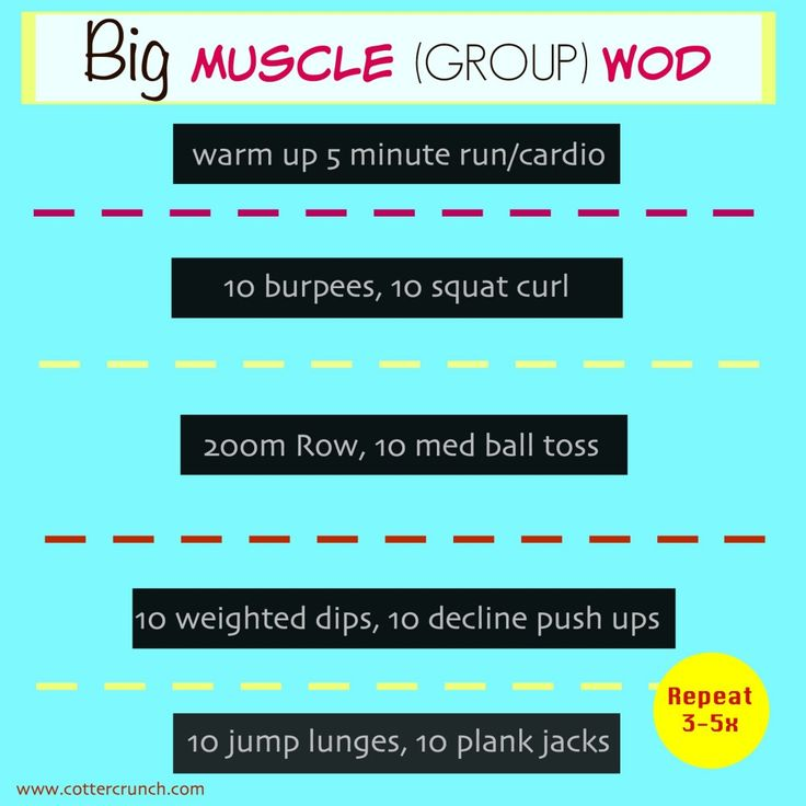 Should You Focus on BIG Muscle Groups in a Workout?