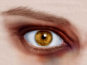 Eye Problems & Symptoms- Everything you can think of including how to get rid of a black eye!