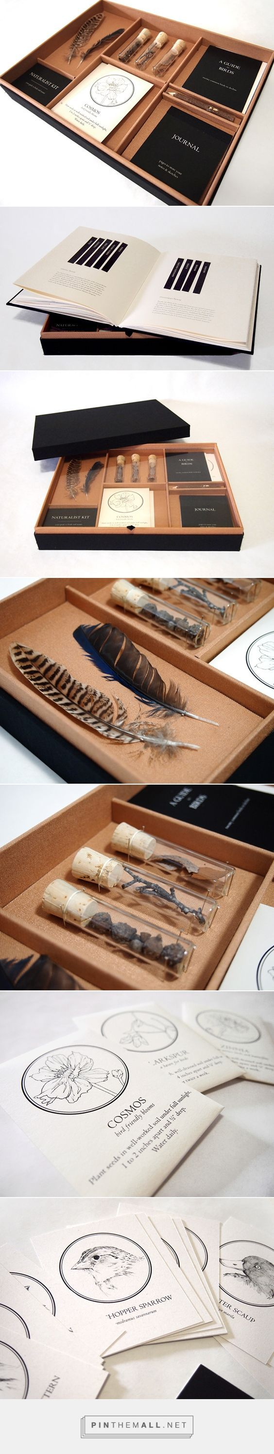 Audubon Promo Kit packaging on Behance by Kimberly Low curated by Packaging Diva PD, This Prototype was created from a variety of existing literature about the National Audubon Society. The information, made the box, hand bound the book, and drew all illustrations.: