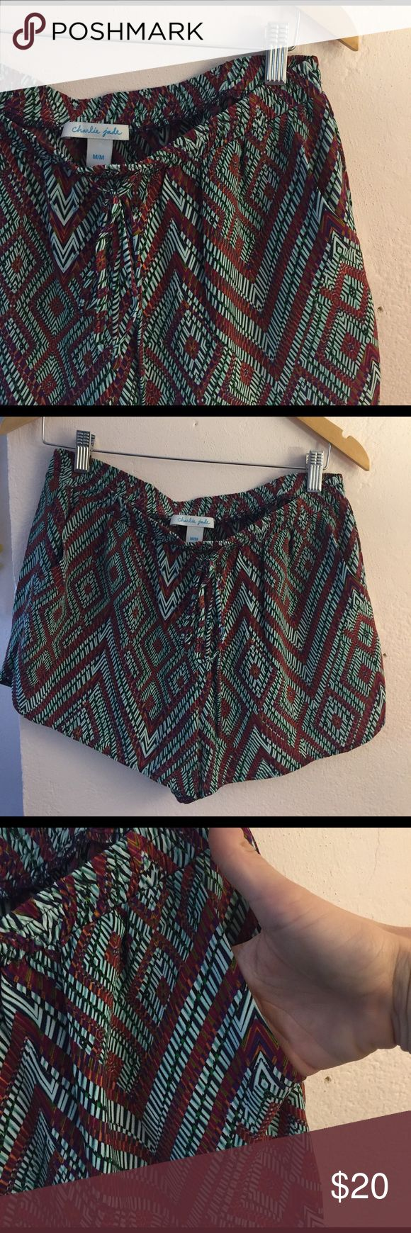 Anthropologie Charlie Jade silk shorts NWOT! Never worn, zero flaws. Elastic band, draw string tie. Front 2 pockets Anthropologie Shorts