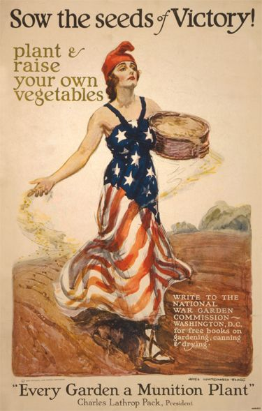 Liberty and Victory Gardens During World Wars I and II and Benefits of Gardening Today
