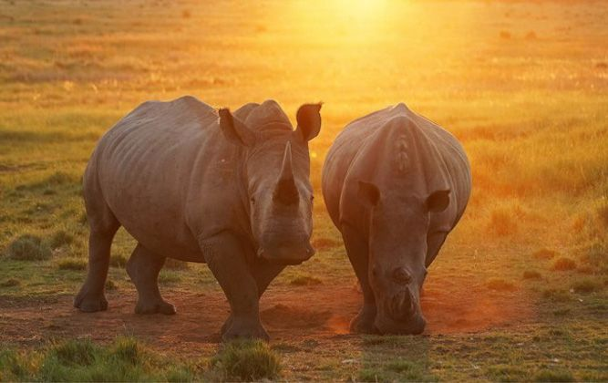 Getaway Travel Blog - Travel South Africa