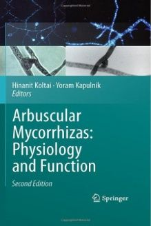 Arbuscular Mycorrhizas  Physiology and Function, 978-9048194889, Hinanit Koltai, Springer; 2010 edition