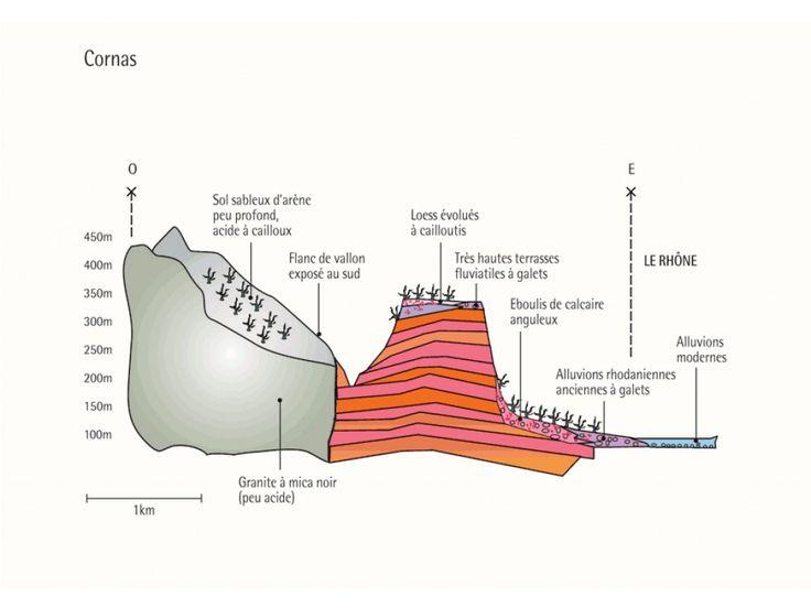 Géologie et Terroir de Cornas - Les Crus des Côtes du Rhône septentrionaux - Vins Rhône