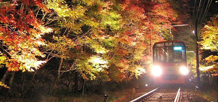 もみじのトンネル(京都) 紅葉たずねて、おけいはん(2015年) おすすめ! 沿線おでかけ情報(おけいはん.ねっと) 京阪電気鉄道株式会社