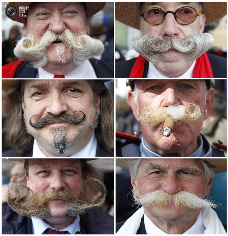 Moustache competition in Brussles.