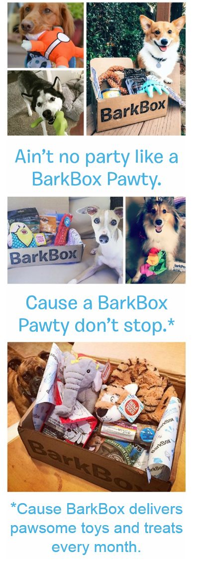 """Pinner Special: Get a free upgrade for an extra premium toy every month (up to $108 value) when you start a 3, 6 or 12 month BarkBox plan by 3/31. Must use this link to redeem: discount auto-applies when you select """"yes, please!"""" for Pupgrade at checkout. BarkBox delivers a box of innovative toys and all-natural treats with a new surprise theme every month, so you can spend more time on important things (like belly scratches and fetch)."""