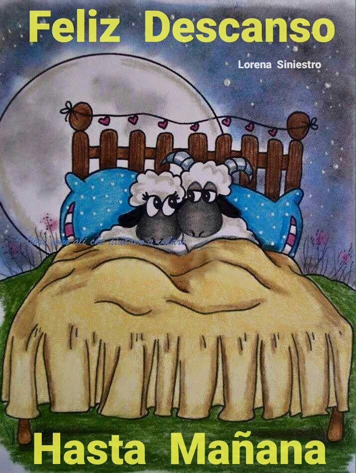Красивые овечки картинки спокойной ночи