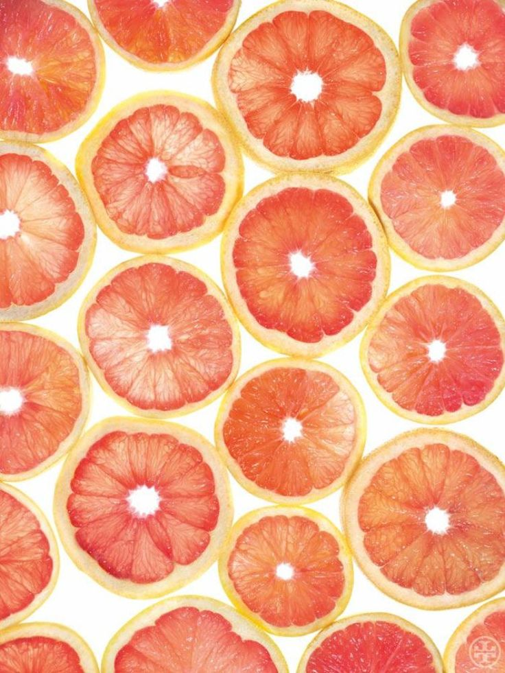 195 best Citrus illustrations images on Pinterest