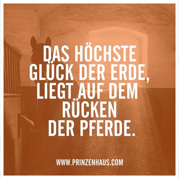 www.prinzenhaus.com Das höchste Glück der Erde liegt auf dem Rücken der Pferde.