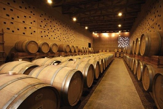 Cuna de Tierra Winery / CCA